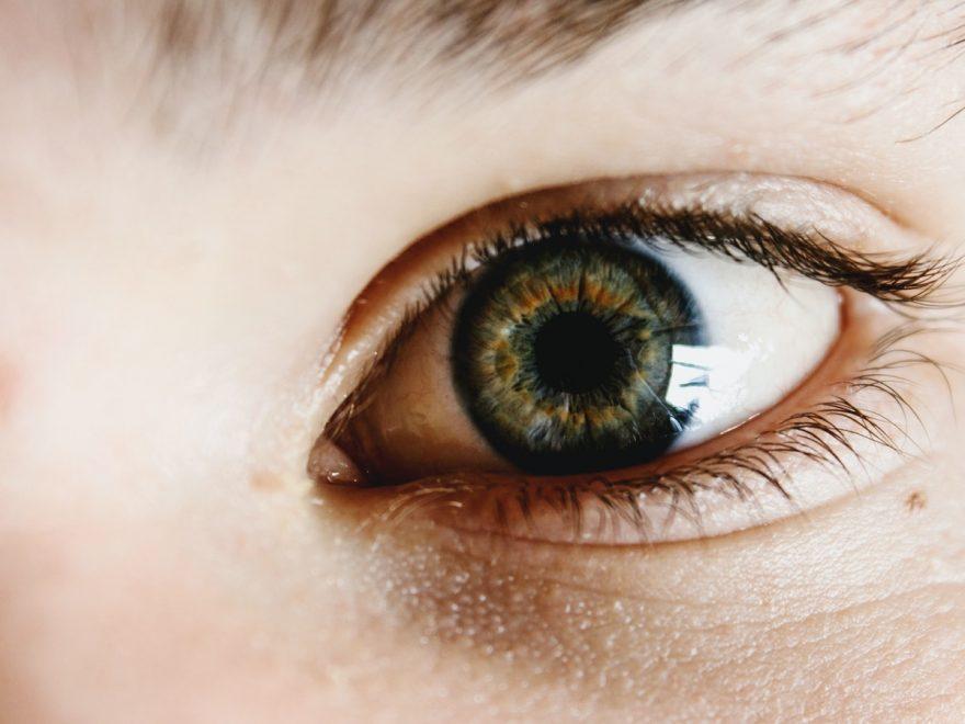 right human eye